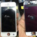 El iPhone 5C nueva imagen frontal se filtra