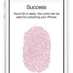 El iPhone 5S a detalle