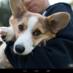 Camera Awesome llega a Android