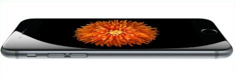 iphone6-plus-flor-naranja