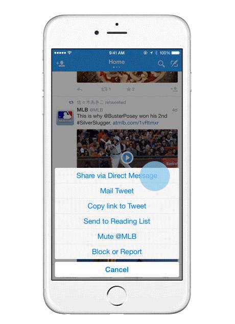 iPhone en la opción de Compartir por mensaje privado Twitter
