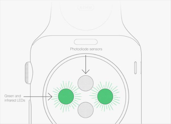 Apple Watch sensores
