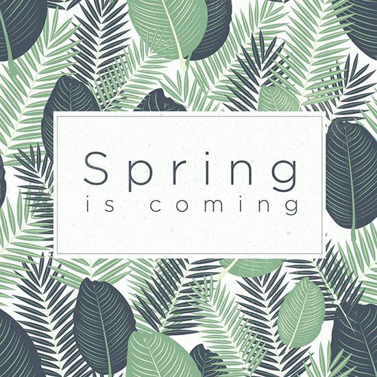 HTC teaser spring